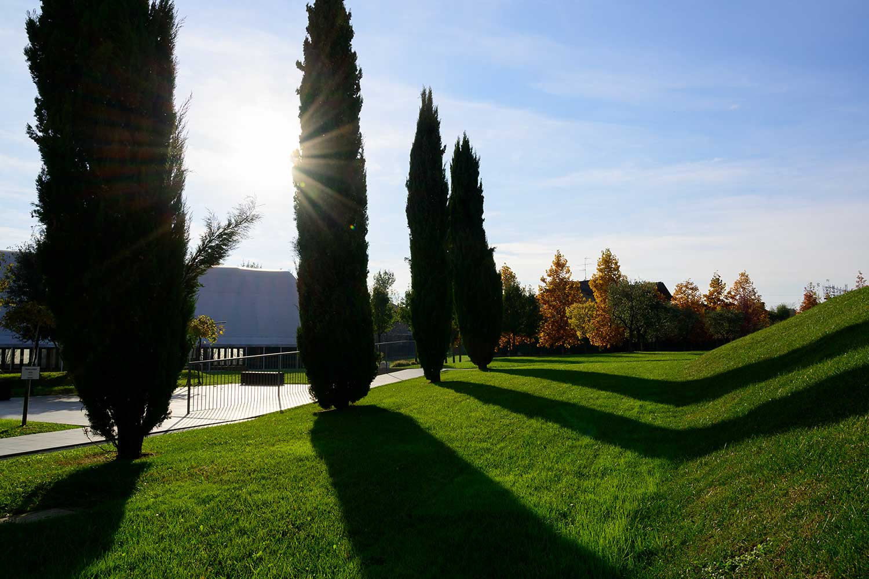 Giardino parco estivo